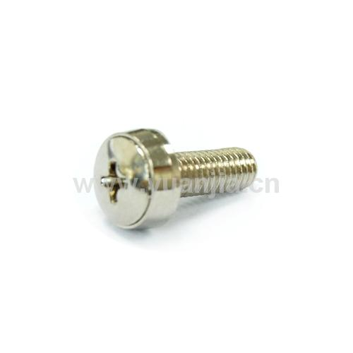 Crown screw assembly crown screw assembly